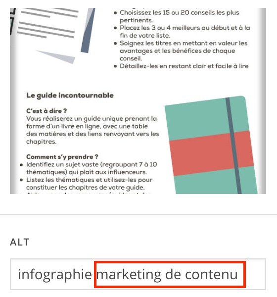 alt tag marketing de contenu
